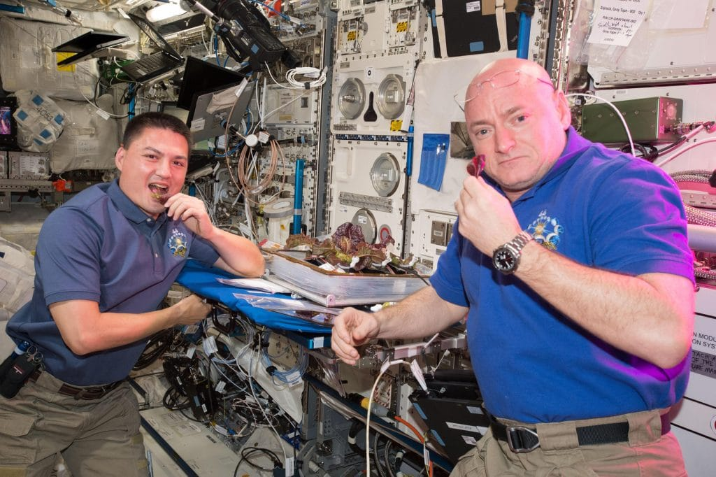 Biophilie : ces astronautes qui jardinent dans l'espace