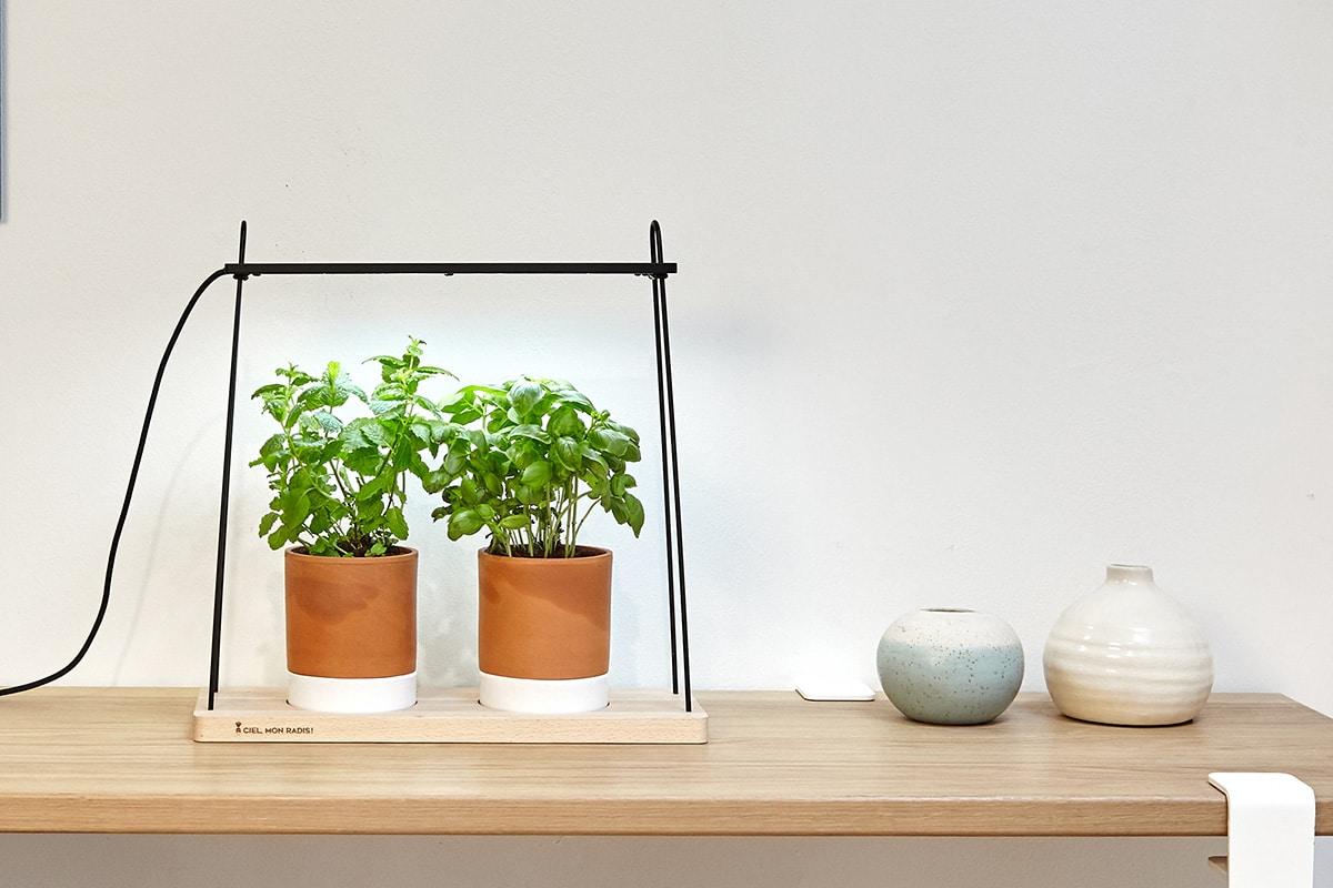 Potager d'intérieur et intelligent pour cultiver des herbes à la maison
