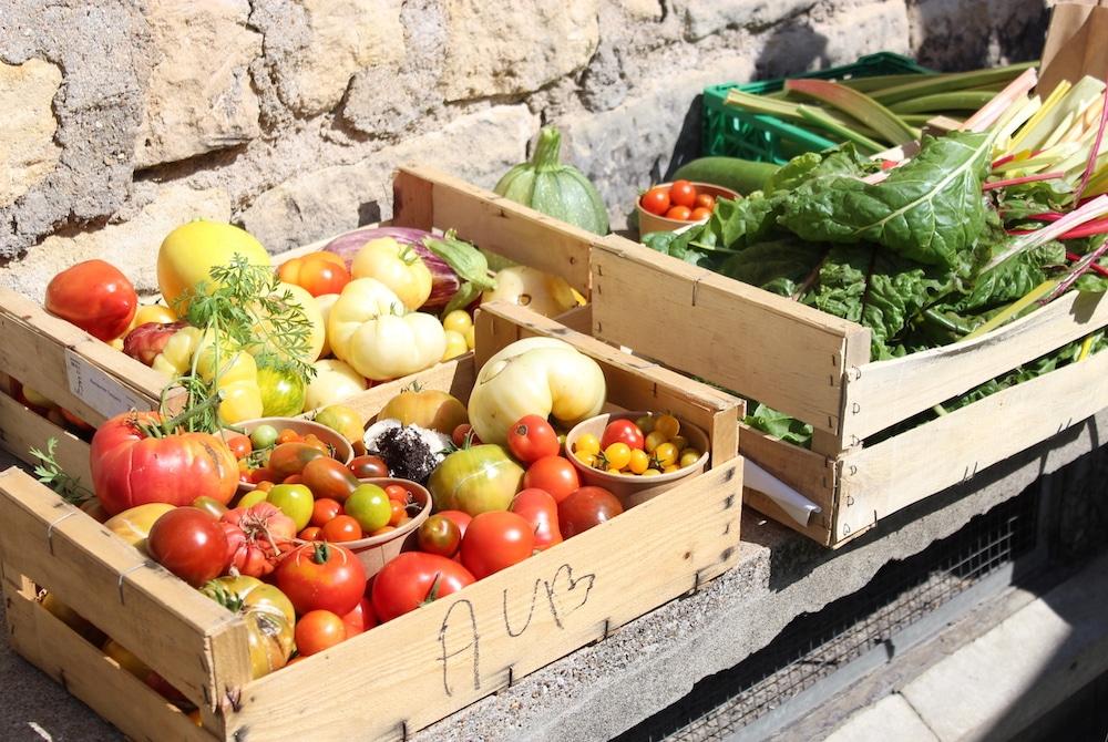 Tout le monde profite des récoltes du potager d'entreprise. 40 variétés de tomates sont cultivées chez M6