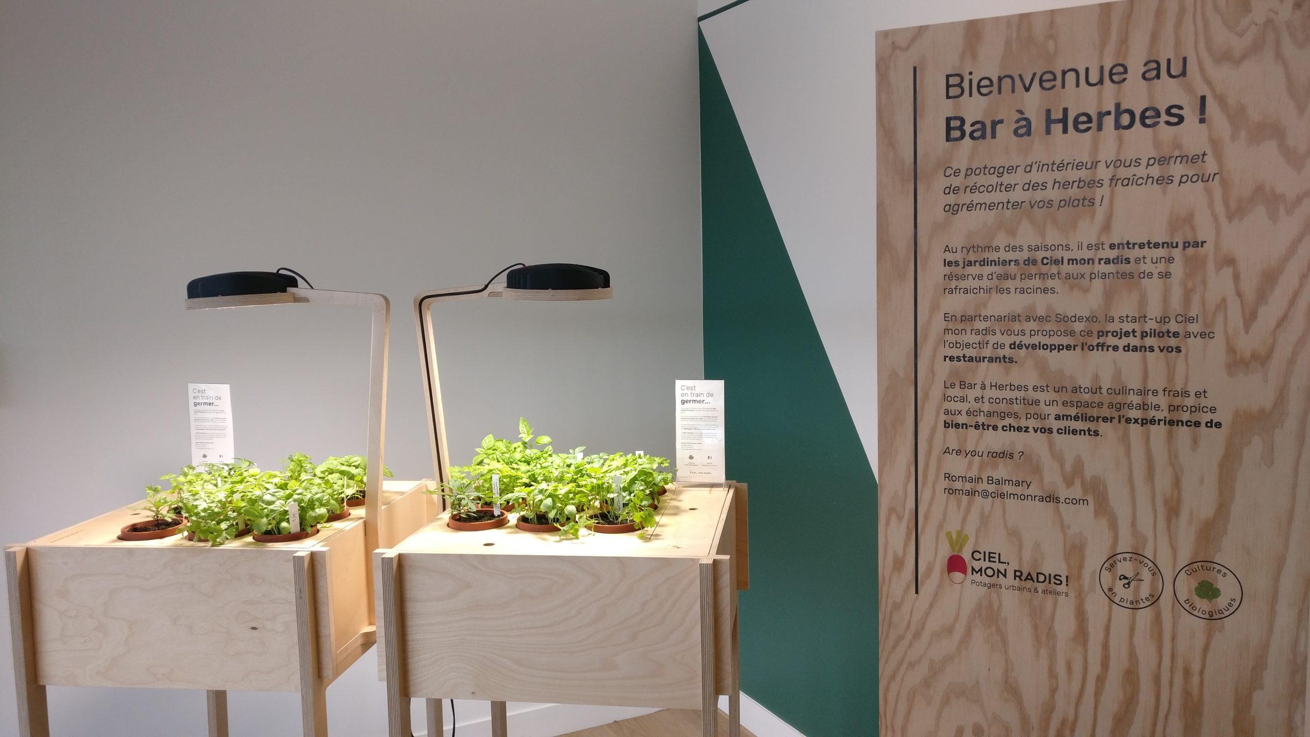 Bar à herbes dans la cafétéria
