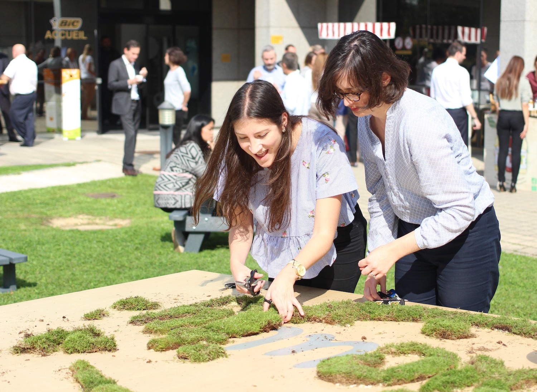 team building green fresque végétale