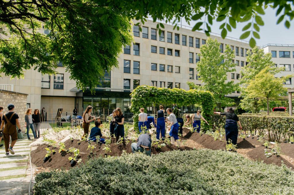 Team building au potager, les espaces verts réinventés