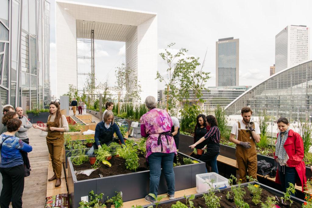 Les collaborateurs se retrouvent au potager pour jardiner ensemble et renforcer leur esprit d'équipe
