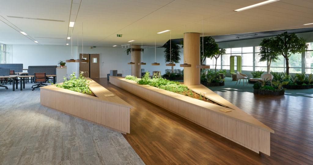 Le potager d'intérieur sublime l'espace de travail tout en apportant une nature ressourçante au sein même des bureaux.