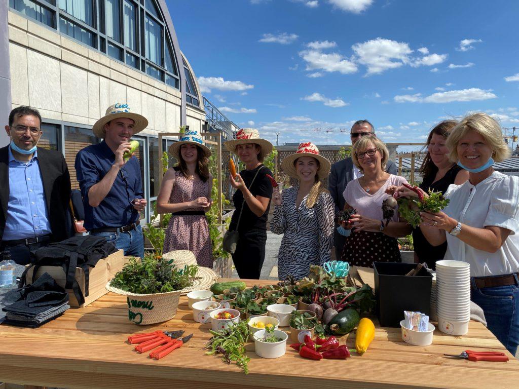 Les équipes du CIC récoltent ensemble les fruits et légumes de leur potager participatif d'entreprise